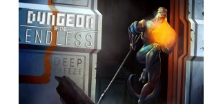 Купить Dungeon of the Endless - Deep Freeze